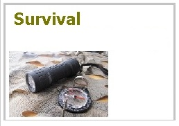 SurvivalButton